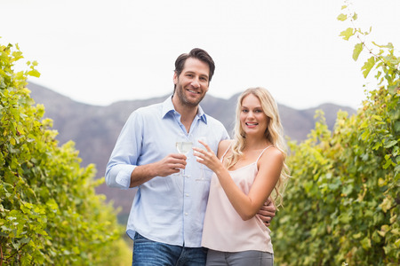 grape field: Young happy couple smiling and toasting in the grape field Stock Photo
