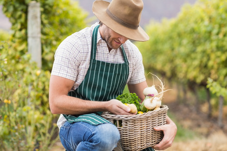 admiring: Young happy farmer holding a basket of vegetables in the field Stock Photo