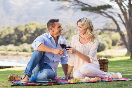 people relaxing: Smiling couple drinking wine and toasting in parkland