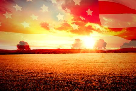 Zeer gedetailleerde 3D Render van een Amerikaanse vlag tegen plattelandscène