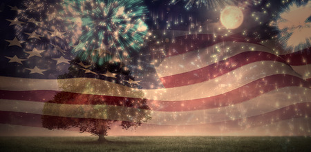 american flag fireworks: Digitally generated american flag rippling against colourful fireworks exploding on black background Stock Photo