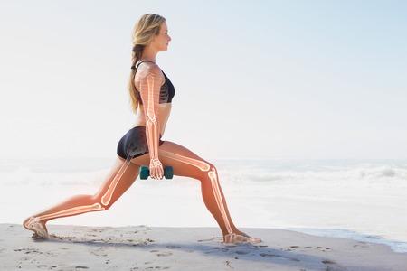 salud y deporte: compuesto digital de los huesos destacados de la mujer el ejercicio Foto de archivo