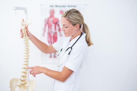 espina dorsal: Doctor que muestra la columna vertebral anatómica en la clínica Foto de archivo