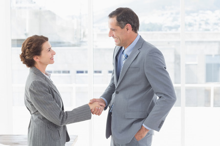shaking hands: Businesswoman shaking hands with a businessman in an office Stock Photo