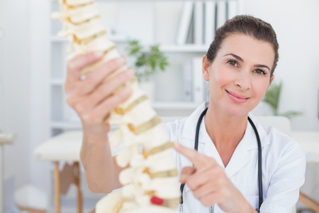 anatomical: Happy doctor showing anatomical spine in medical office Stock Photo