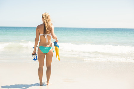 scuba woman: Wear view oh woman holding mask, scuba and fins at the beach Stock Photo