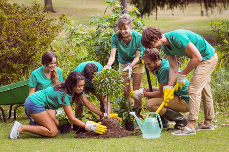 society: Happy friends gardening for the community on a sunny day