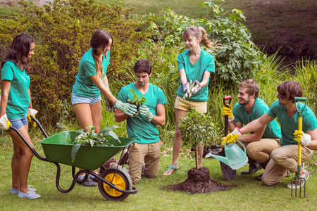 community garden: Happy friends gardening for the community on a sunny day