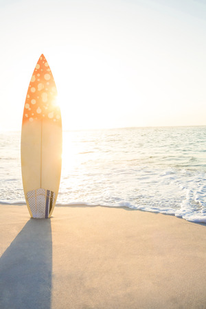 surf board standing on the sand at the beach