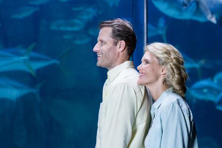 fishtank: Happy couple looking at fish tank at the aquarium