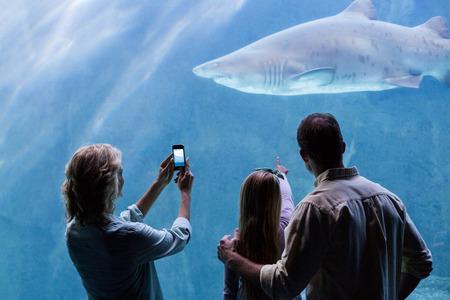 fish tank: Happy family looking at the fish tank at the aquarium