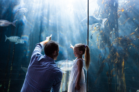 Father and daughter pointing a fish in the tank at the aquarium
