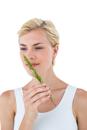 smelling: Gorgeous blonde woman smelling branch of herb on white background