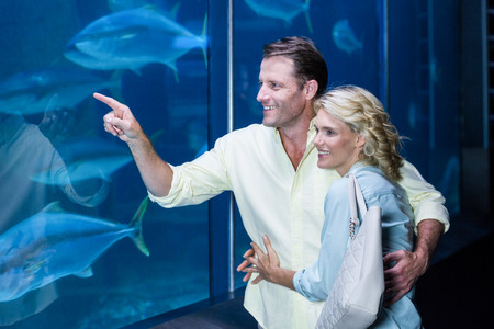 fishtank: Happy couple pointing a fish tank at the aquarium