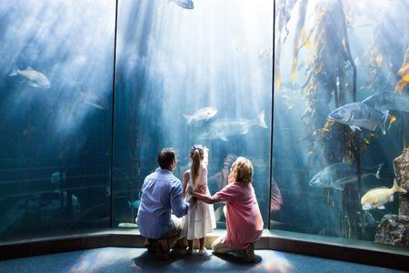 fishtank: Wear view of family looking at fish tank at the aquarium