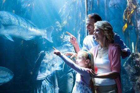 pez pecera: Familia feliz que se�ala un pez en el tanque en el acuario Foto de archivo