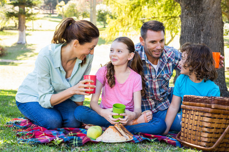 Happy family on a picnic in the park on a sunny day