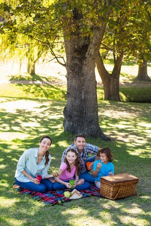 picnic park: Happy family on a picnic in the park on a sunny day