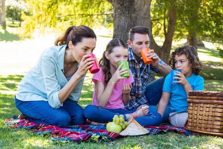 family with two children: Happy family on a picnic in the park on a sunny day