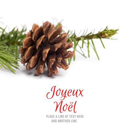 pomme de pin: Joyeux noel against brown pine cone with fir branch Banque d'images