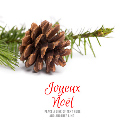 joyeux: Joyeux noel against brown pine cone with fir branch Stock Photo