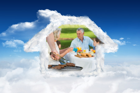 extended family: Barbecue grill with extended family having lunch in park against bright blue sky with clouds