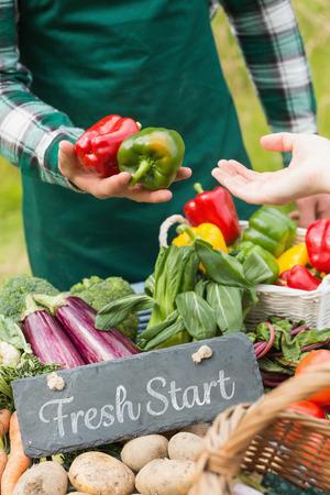 frisse start: Verse start tegen verse groenten bij de boeren markt