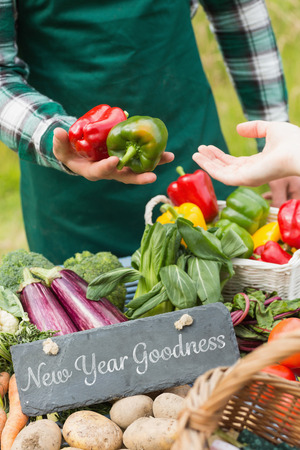 goodness: New year goodness against fresh vegetables at farmers market