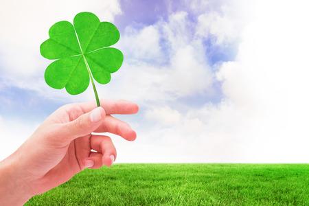 saint patty: Trifoglio contro il campo verde