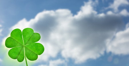 saint patty: Shamrock against cloudy sky