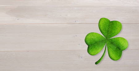 saint patty: Shamrock against bleached wooden planks background Stock Photo