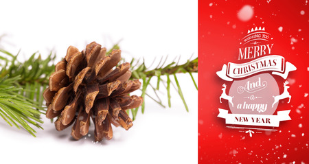 pomme de pin: La neige qui tombe contre brun c�ne de pin branche de sapin