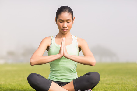 parkland: Peaceful sporty woman doing yoga in parkland