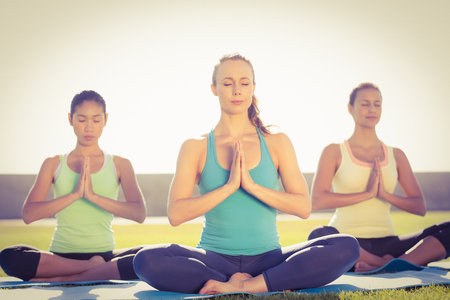 parkland: Peaceful sporty women doing lotus pose in parkland Stock Photo