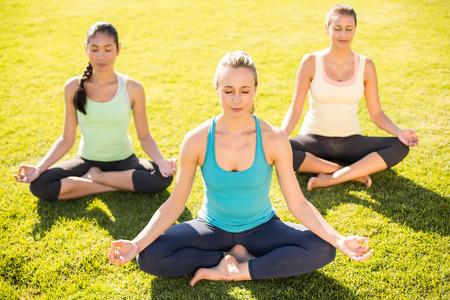 mujeres juntas: Mujeres deportivas pacíficas haciendo yoga juntos en un parque Foto de archivo