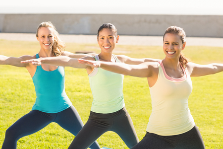 parkland: Portrait of smiling sporty women doing yoga together in parkland