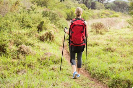 adventuring: Blonde hiker hiking with trekking poles in the nature Stock Photo