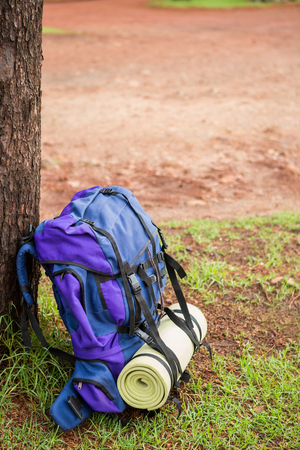 Side view of an hiking backpack and hiking pole leaning on a tree