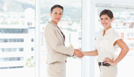 saleswomen: Side view of saleswomen shaking their hands