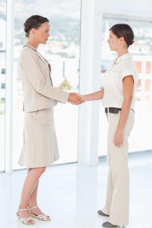 saleswomen: Side view of saleswomen shaking their hands next to a window