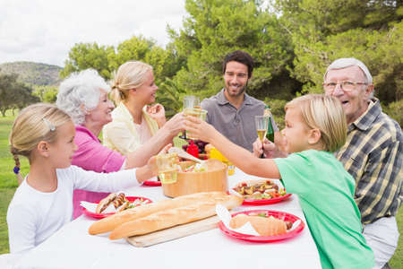 multigeneration: Multigeneration family toasting each other at picnic table in the park
