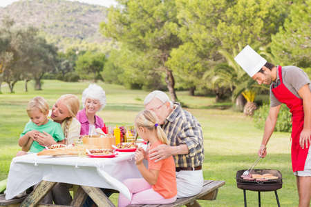 multigeneration: Multigeneration family enjoying a barbeque in the park