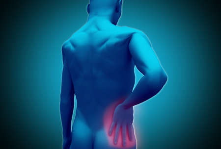 lower back pain: Digital blue human rubbing highlighted pink lower back pain LANG_EVOIMAGES