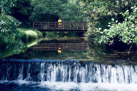пышной листвой: Woman standing on footbridge over forest waterfall amid lush foliage