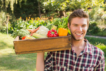 man carrying box: Smiling man carrying box of vegetables on a sunny day