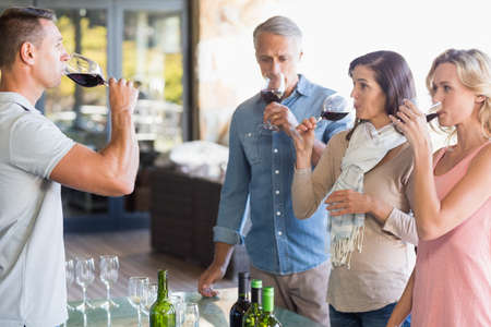 sipping: Sommelier and his customers doing wine tasting at vineyard