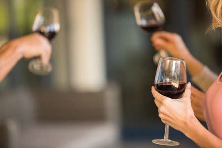trato amable: Amigos felices en una cata de vinos con el vino en un vi�edo