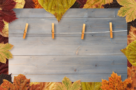 peg board: Autumn leaves pattern against bleached wooden planks background Stock Photo