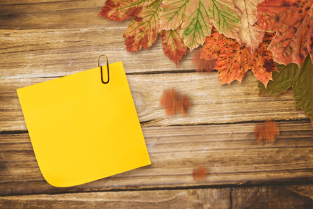 leaf line: Sticky note with grey paperclip against autumn leaves on wood
