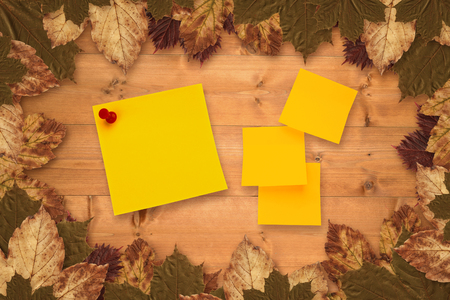 inscribe: Sticky note against autumn leaves on wood